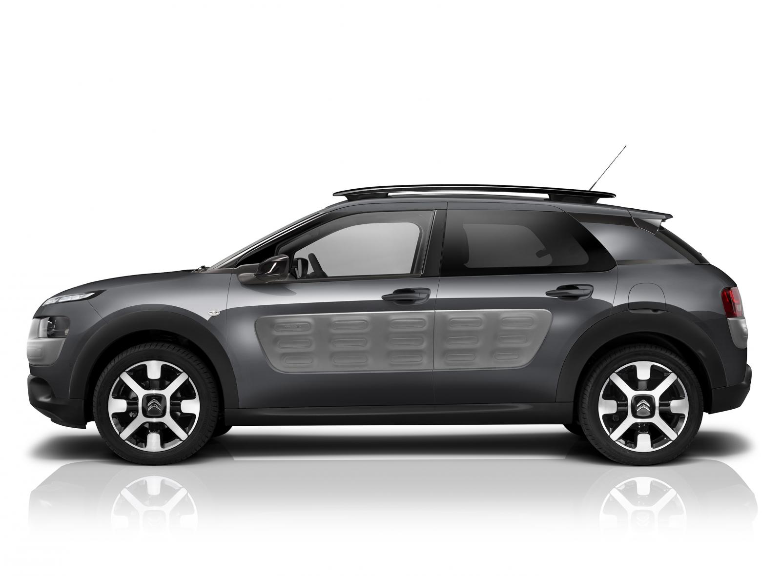 C4 Cactus Shine edition 2015 Gris Shark